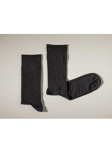 Madame Coco Avignon Erkek Soket Çorap Antrasit